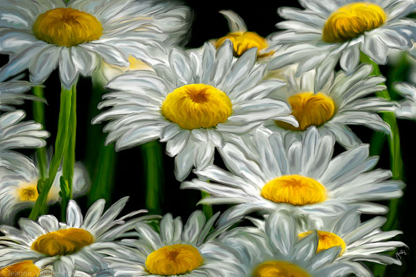 painted daisys